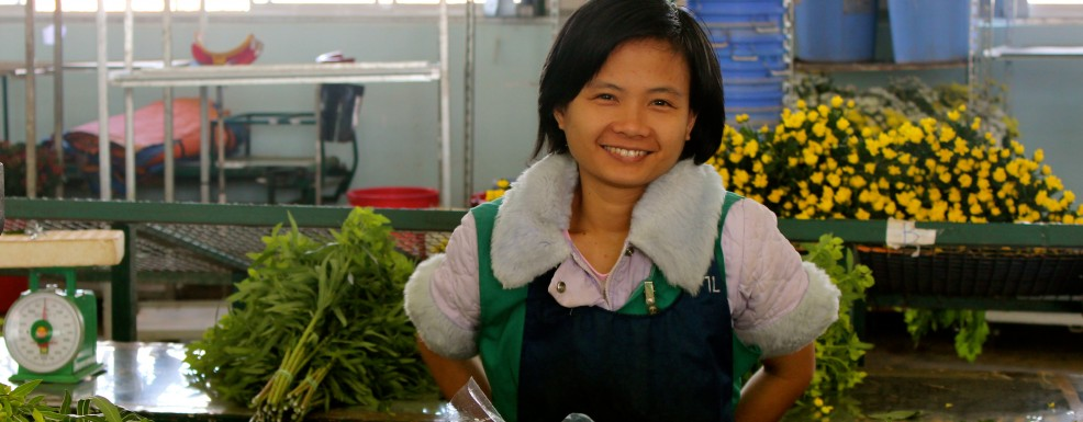 Agricultural Competitiveness Project in Vietnam